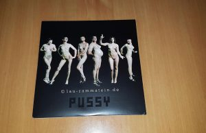 Rammstein – Pussy (Limited 7inch Vinyl, UK Import) | Nummer 1859 | 1