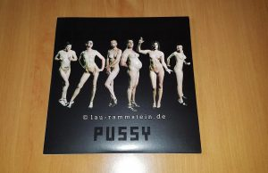 Rammstein - Pussy (Limited 7inch Vinyl, UK Import) | Nummer 418 | 1