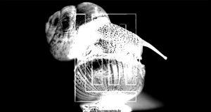 Video zur Lindemann Single Ich weiß es nicht